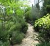 Botaanikaaia vaated / Botaanikaaed